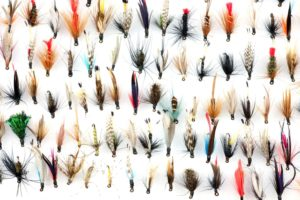 Best Trout Flies for fly fishing trout