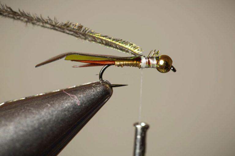 Copper John Fly Tying Tutorial Step 11
