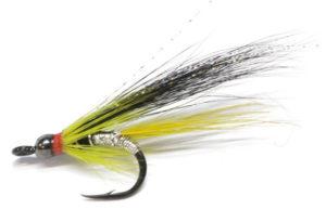 Frankie McPhillips Cascade Shrimp Gold Conehead