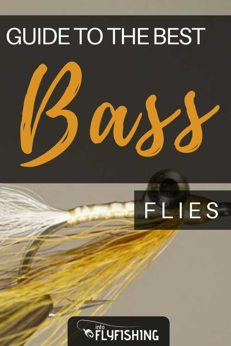 Guide To The Best Bass Flies