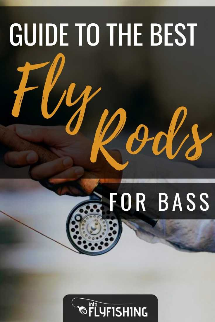 Guide To The Best Fly Rods For Bass