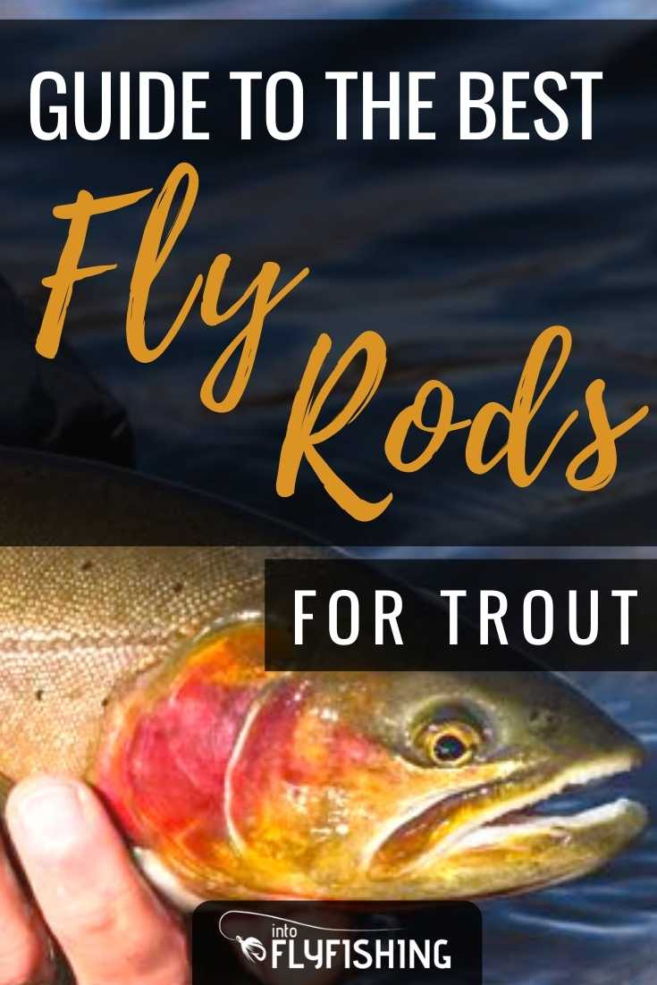 Guide To The Best Fly Rods For Trout