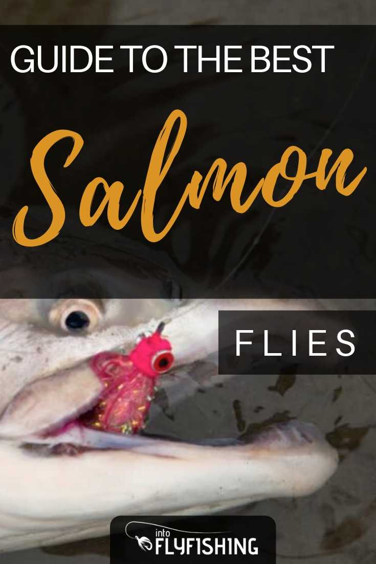 Guide To The Best Salmon Flies