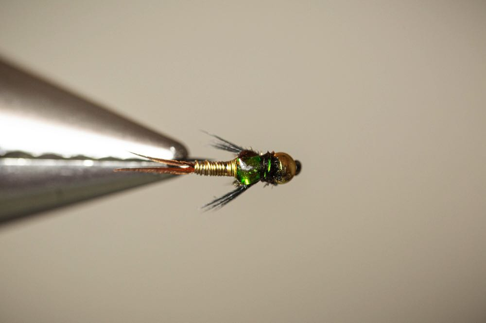 How To Tie a Copper John Finished Fly Top View