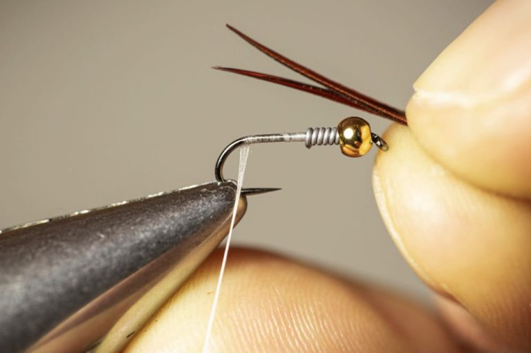 Learn To Tie a Copper John Step 6 part 1