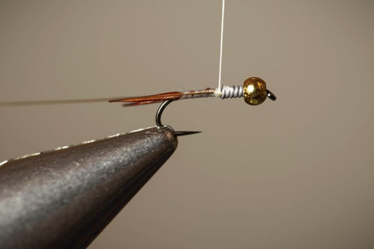 Learn To Tie a Copper John Step 7 part 1