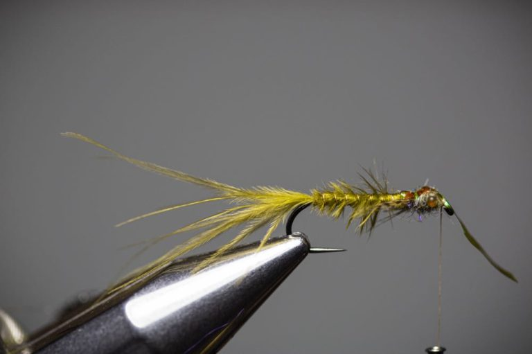 Learn To Tie a Damselfly Larva Step17