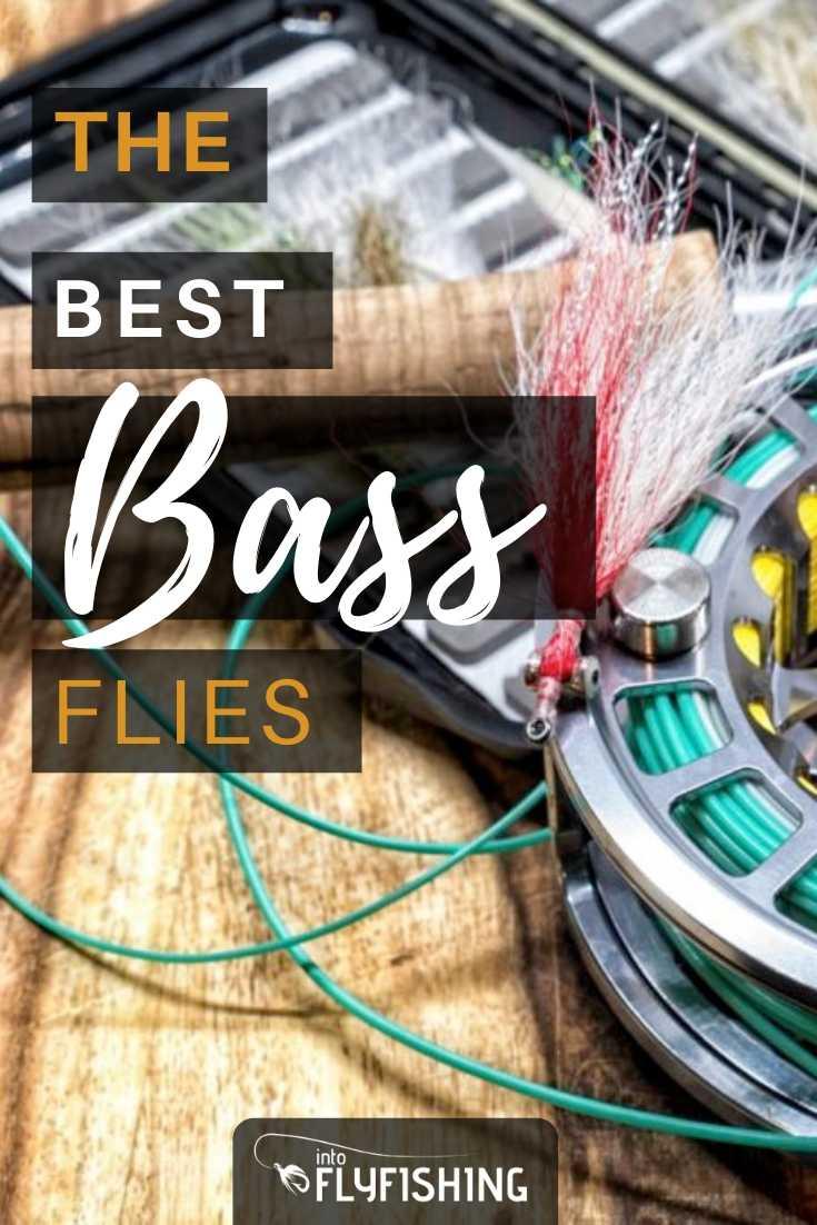 The Best Bass Flies