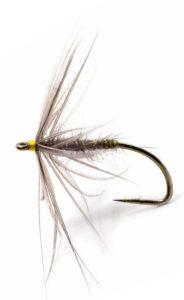 Waterhen Bloa fly pattern
