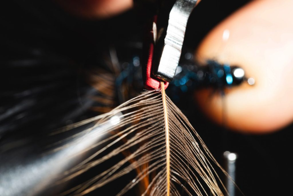 fly tying hackle