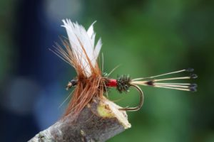 One of the Best Dry Flies - featured image