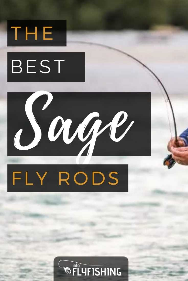 Best Sage Fly Rod