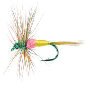 Tups Indispensable fly pattern