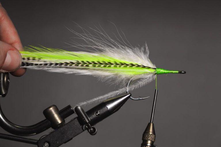 fly tying tutorial - Semper_step-10
