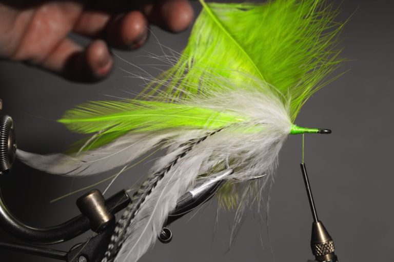 fly tying tutorial - Semper_step-13
