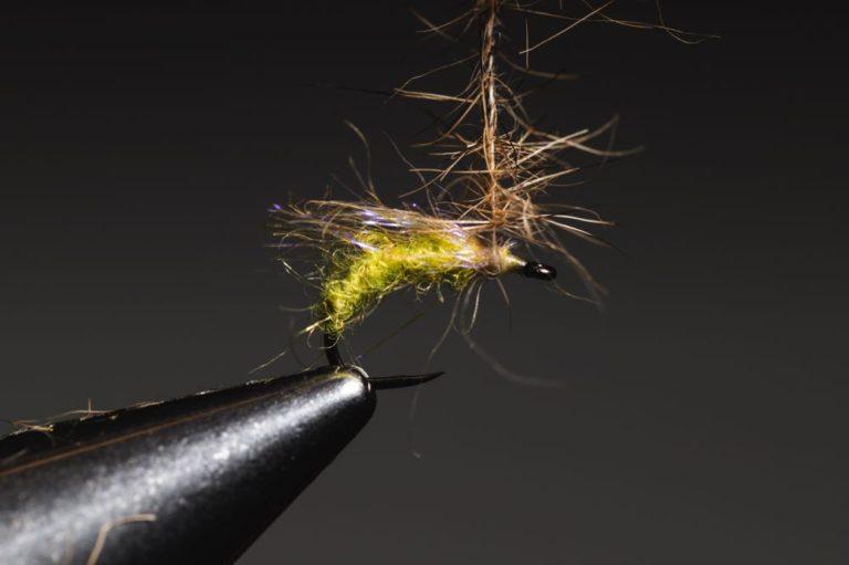 fly tying tutorial caddis_emerger_step-10