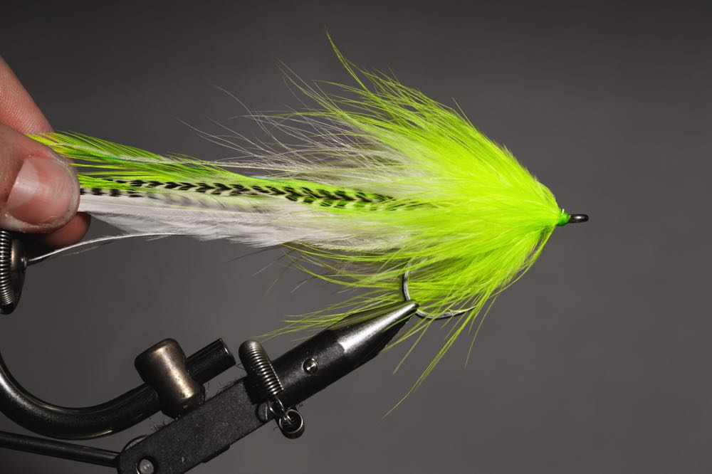 how to tie a Semper_complete_fly
