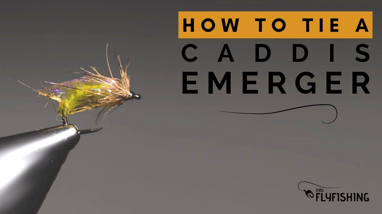 how to tie a caddis emerger youtube thumbnail