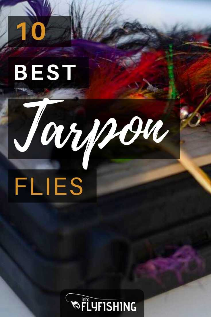 10 Best Tarpon Flies