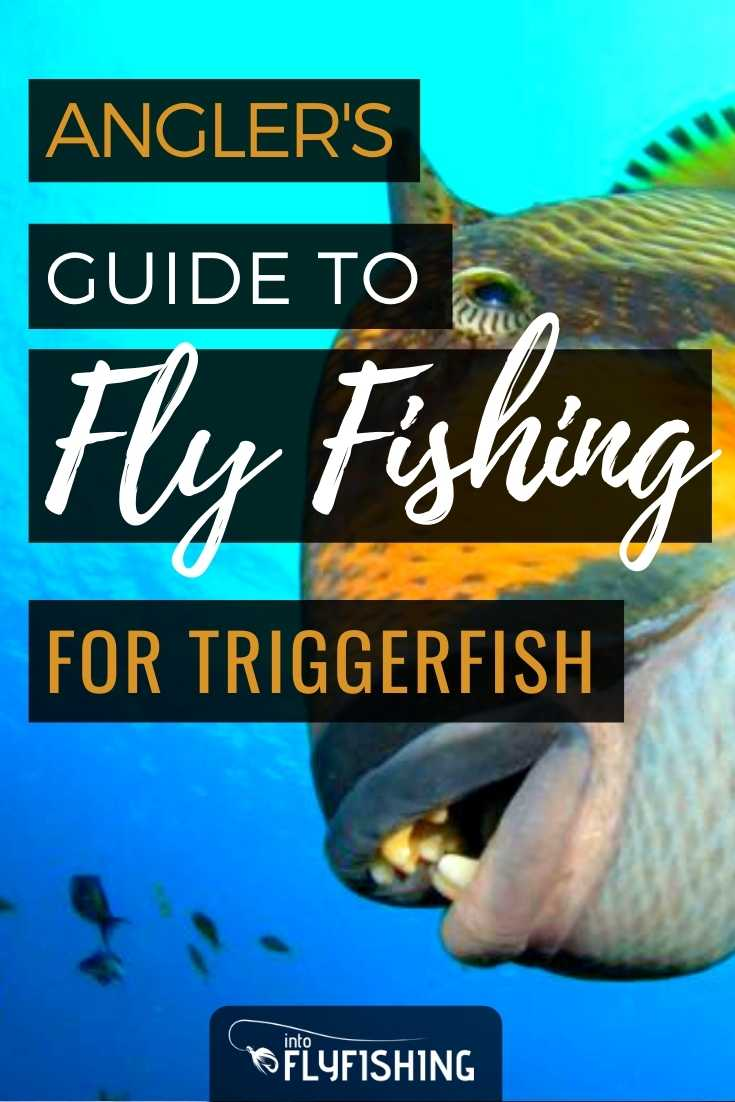 Angler's Guide To Fly Fishing for Triggerfish