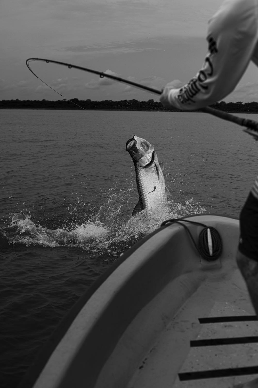 Fly Fishing TarponCosta_Rica_Low_Res-61
