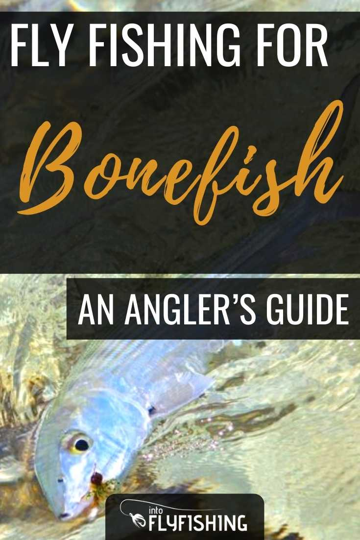Fly Fishing for Bonefish: An Angler's Guide