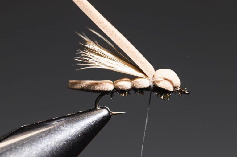 Fly Tying Tutorial Guide GFA Hopper - step14