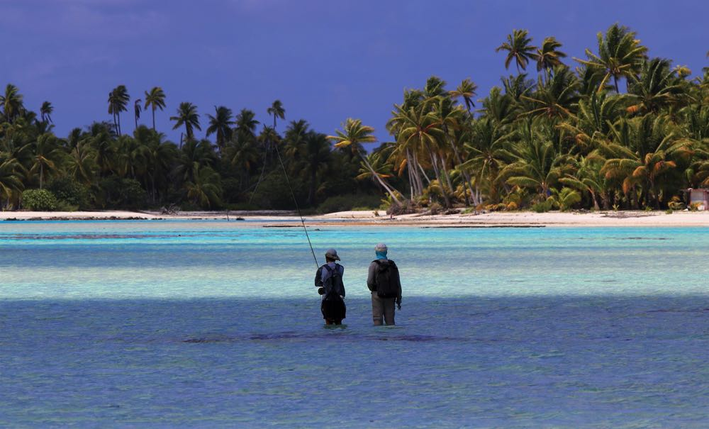 Fly fishing for bonefish in the tropics
