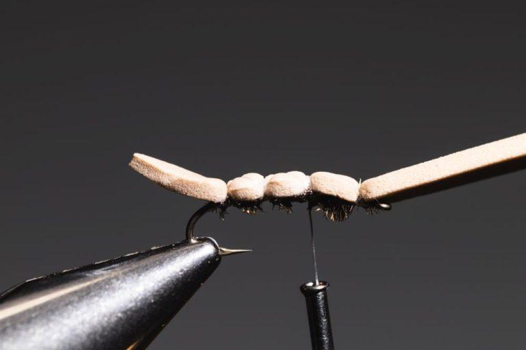 GFA Hopper Fly Tying Tutorial - step9