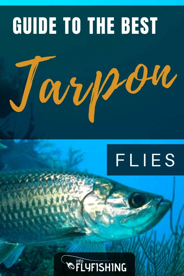 Guide To The Best Tarpon Flies