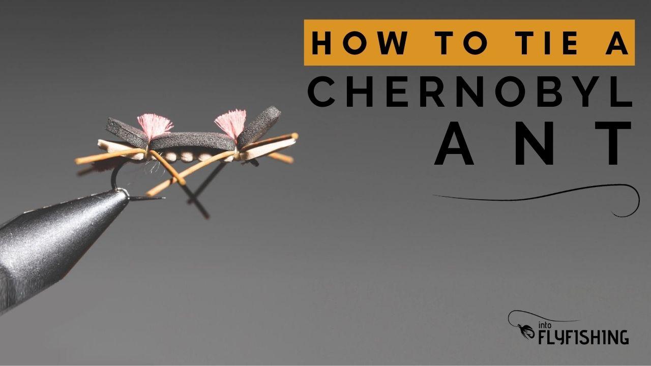 Chernobyl Ant Video Thumbnail