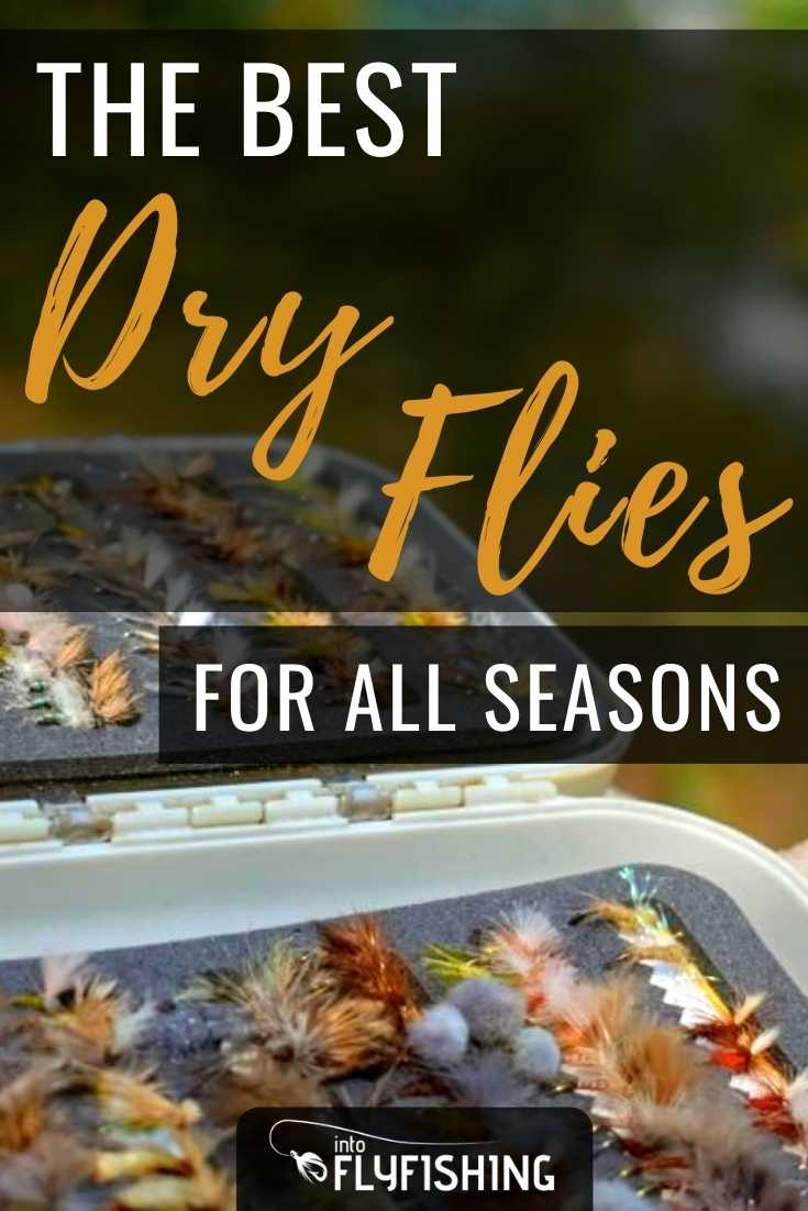The Best Dry Flies For All Seasons