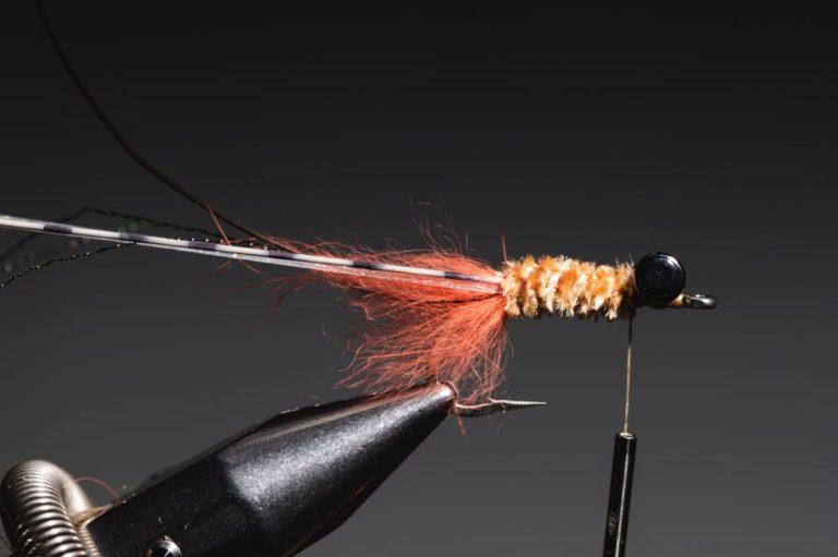 fly tying guide - avalon_shrimp_step-16