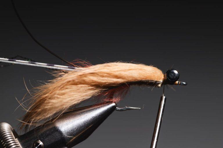 fly tying guide - avalon_shrimp_step-17
