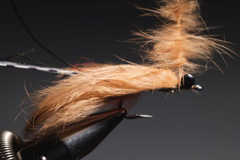 fly tying guide - avalon_shrimp_step-20