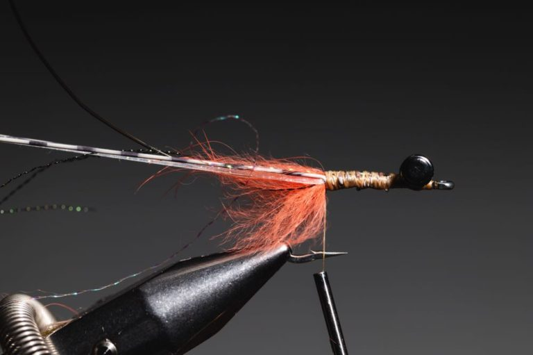 fly tying tutorial - avalon_shrimp_step-13