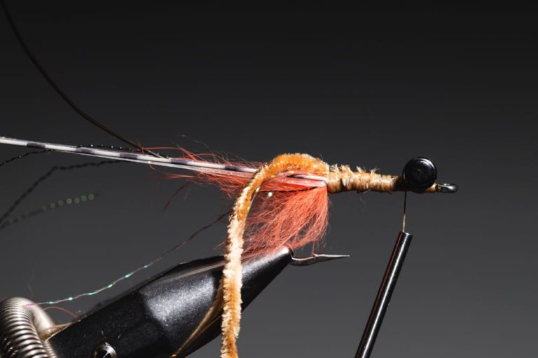 fly tying tutorial - avalon_shrimp_step-14