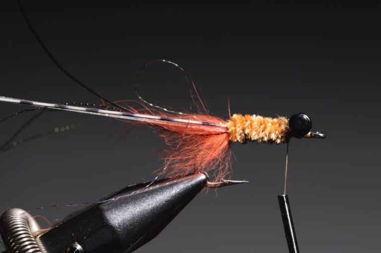 fly tying tutorial - avalon_shrimp_step-15
