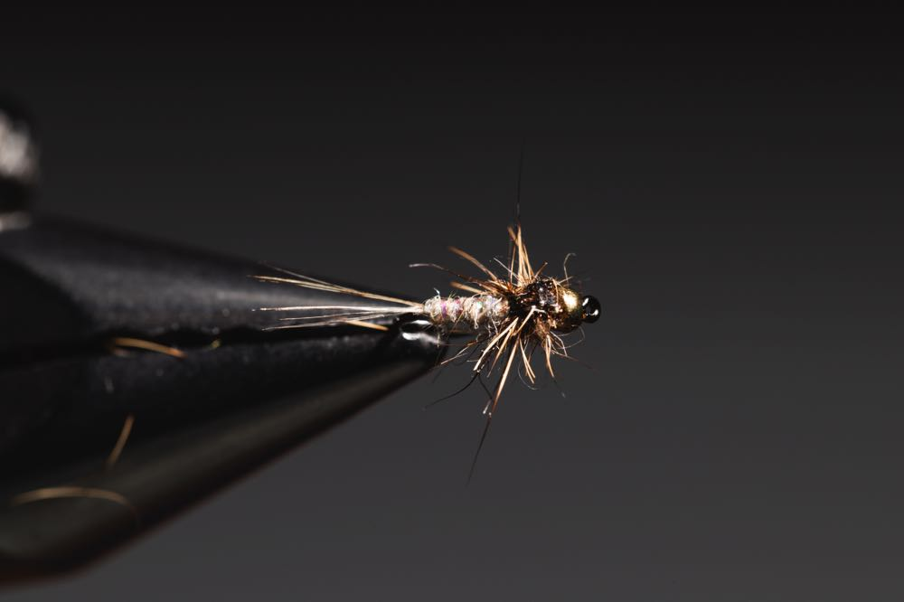Gold Ribbed Hare_s Ear step-20learn how to tie a