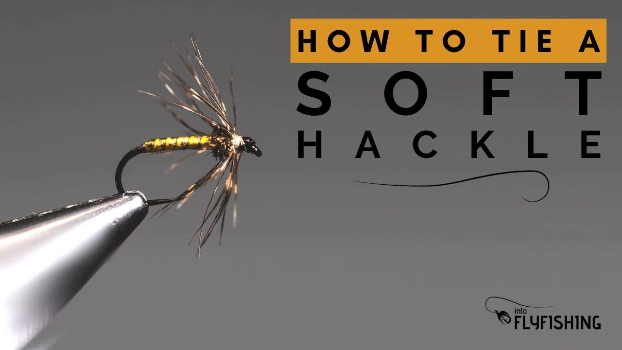 How To Tie a Soft Hackle
