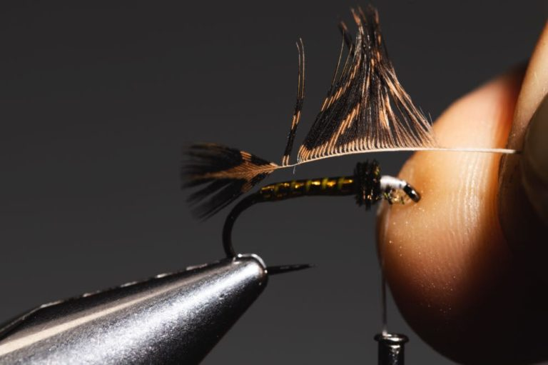 fly tying tutorial - soft hackle-12
