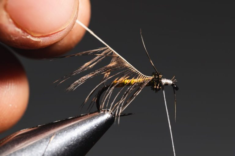 fly tying tutorial - soft hackle-13