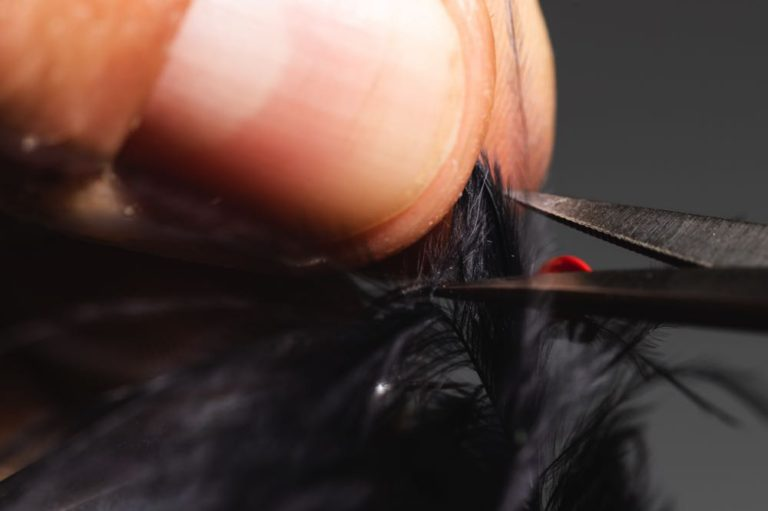 step6how to tie a micro bugger fly -