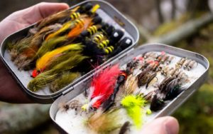 Best streamers & hairwings for trout