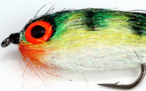 a close-up of fly tying eye