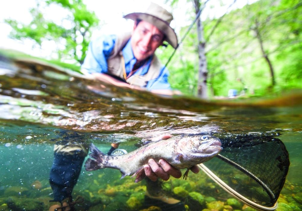 an angler caught a huge trout