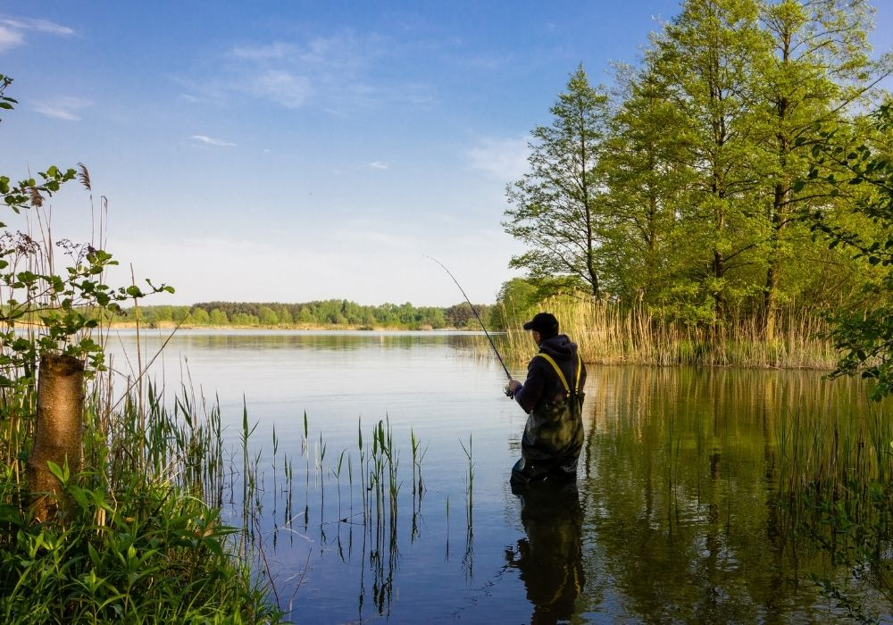 A fly angler fishing in a river.