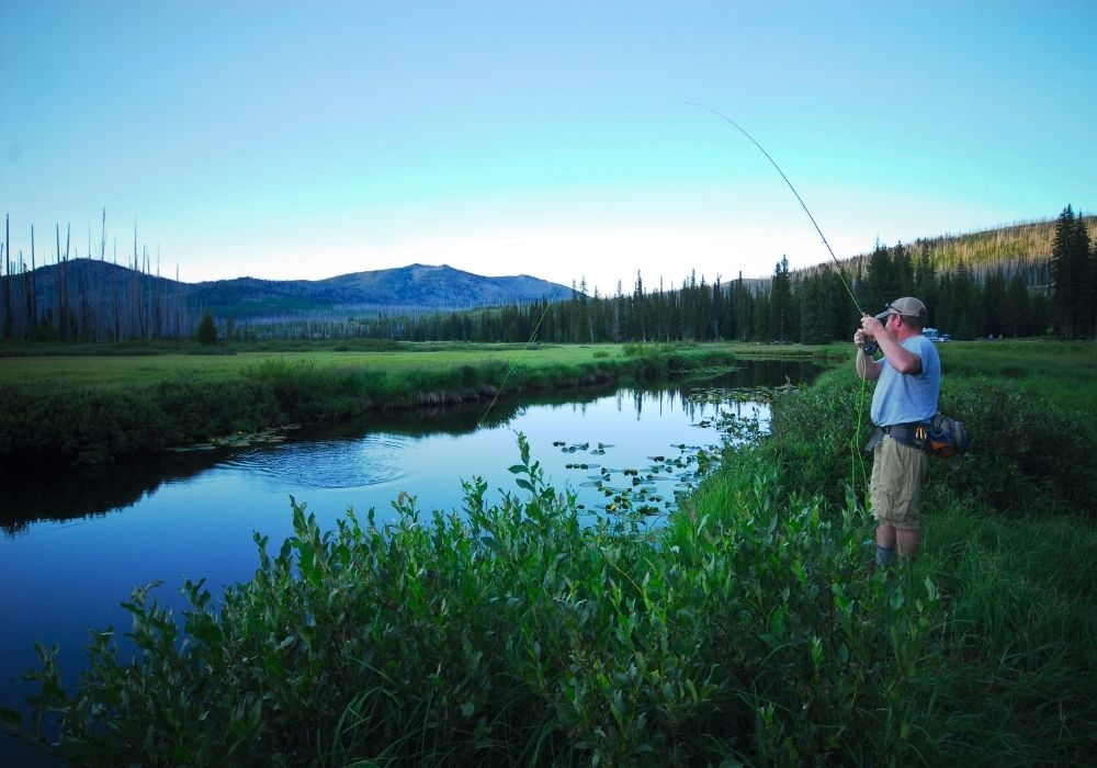 A fly fisherman fishing in Squaw Creek Off of the Gallatin.