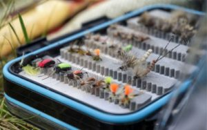 A set of terrestrial flies in a fly box for fly fishing
