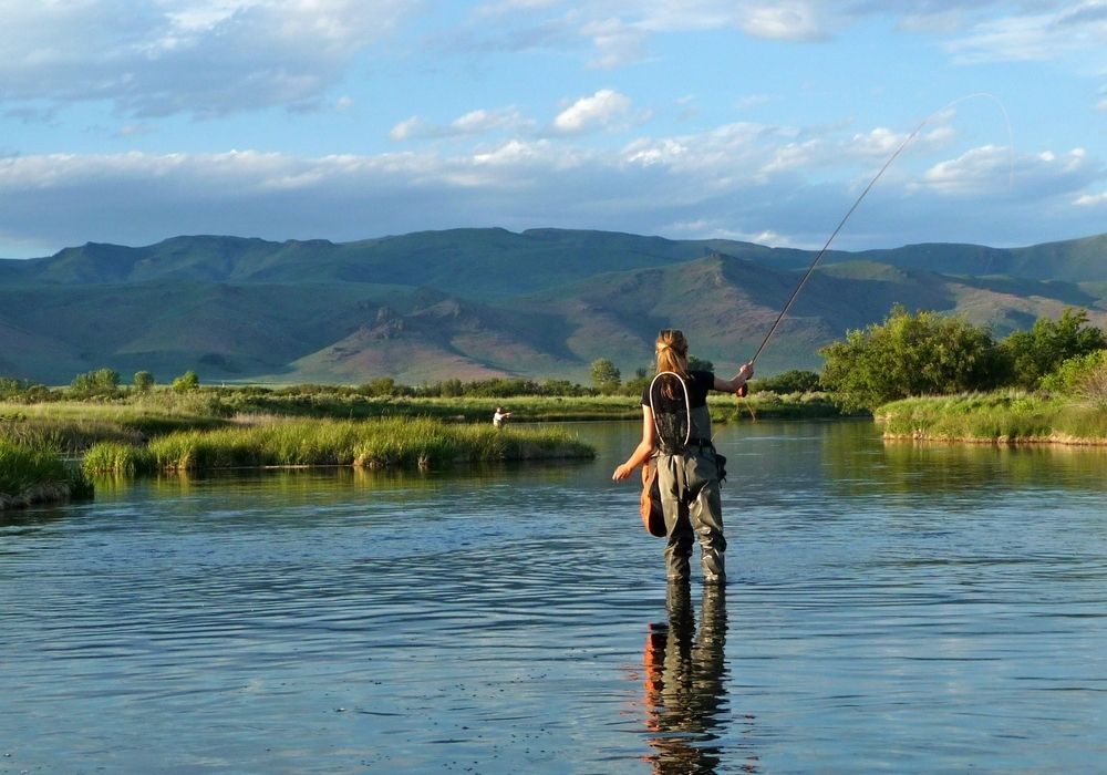 Fly fishing in a spring fed creek